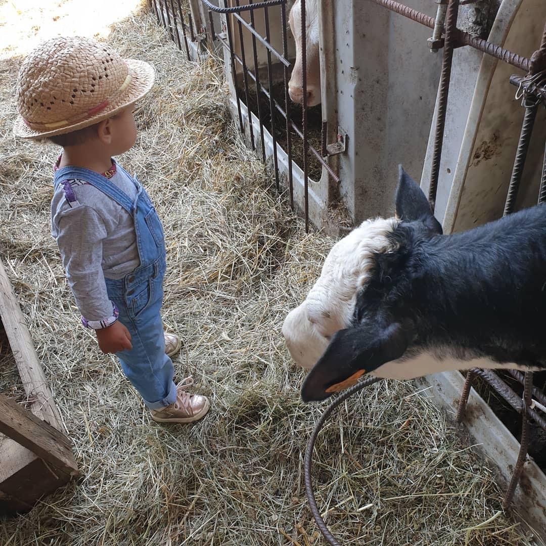 Visite de ferme pour les enfants