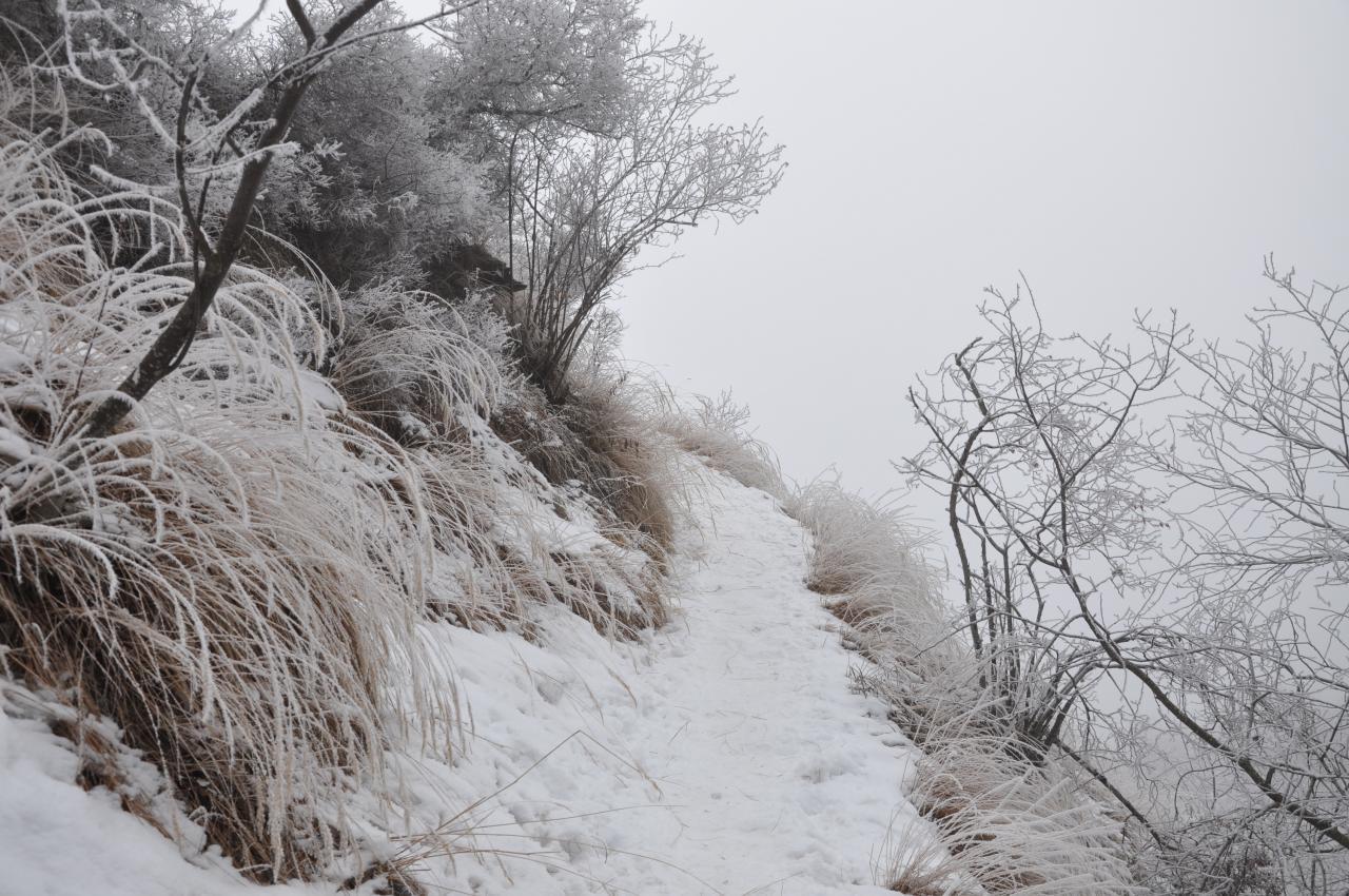 Sentier du canal en hiver