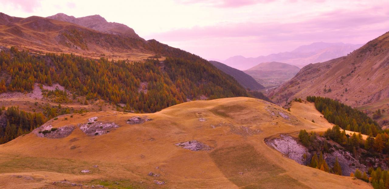Plateau dans la vallée de Rouanne