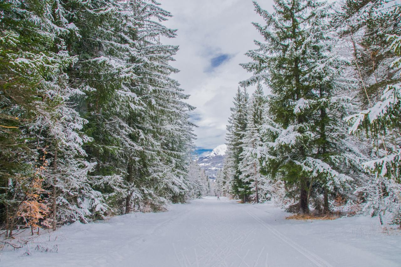 ski de fond Orcières