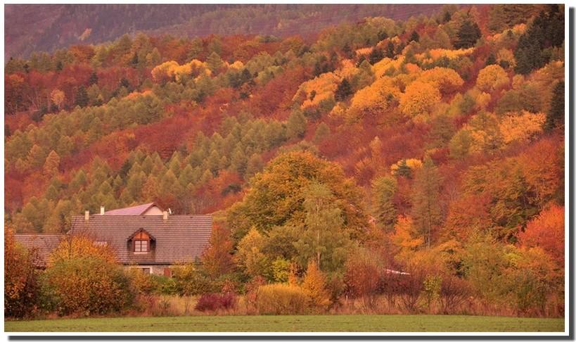 apres-un-orage-d-automne-1.jpg