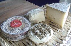 fromages-de-chevre-fermiers.png